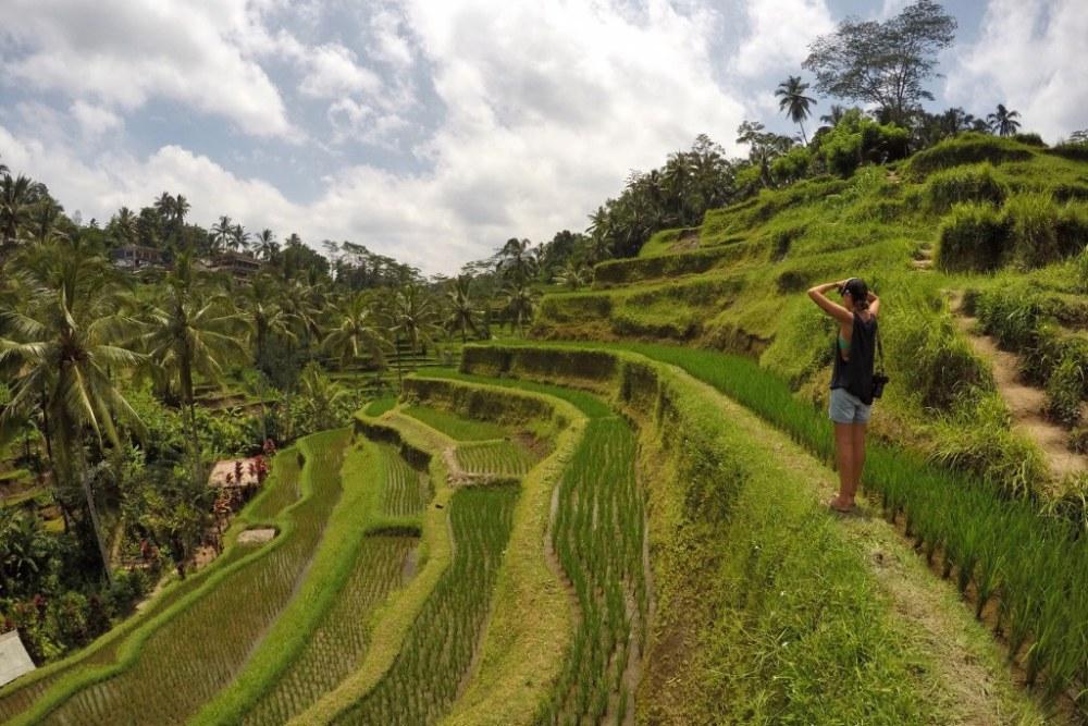 Islandhopping: Pareltjes rondom Bali <br/>€ 1338.00 <br/> <a href='https://www.333travel.nl/travel/?tt=4015_1631729_241358_&r=https%3A%2F%2Fwww.333travel.nl%2Findonesie%2Frondreis%2Fislandhopping-pareltjes-rondom-bali' target='_blank'>Meer reisinfo</a>