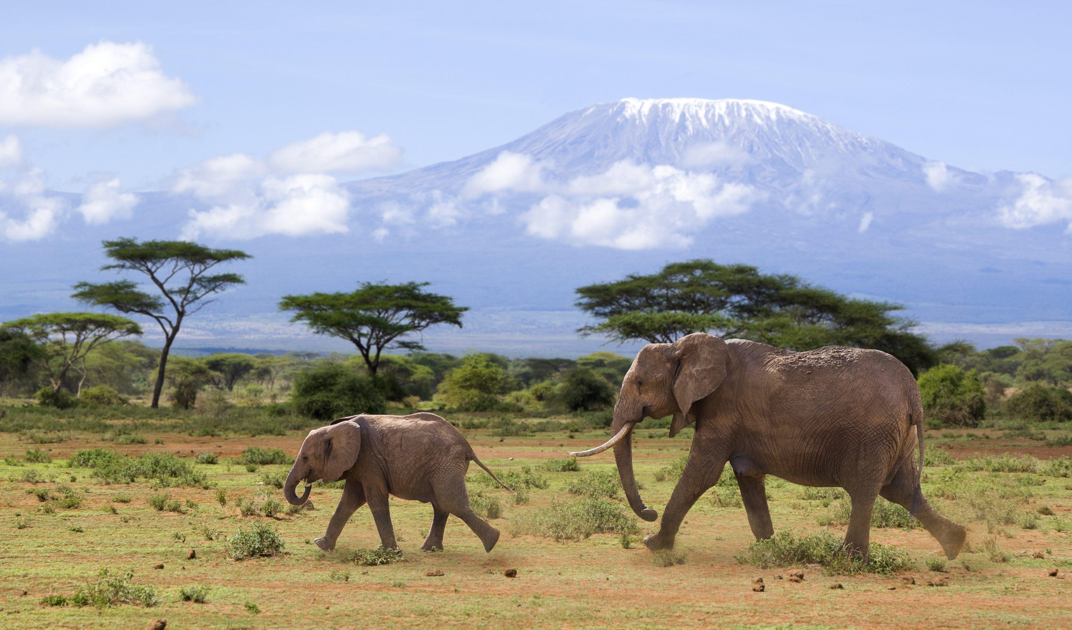Kenia | reisinformatie en tips - 333travel